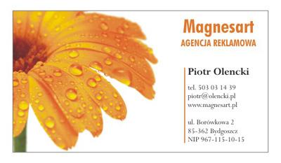 magnesart3